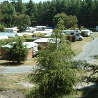 Rakaia River Holiday Park & Motels