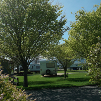 Queen Street Holiday Park