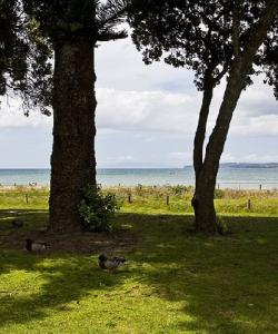 Orewa Beach Holiday Park